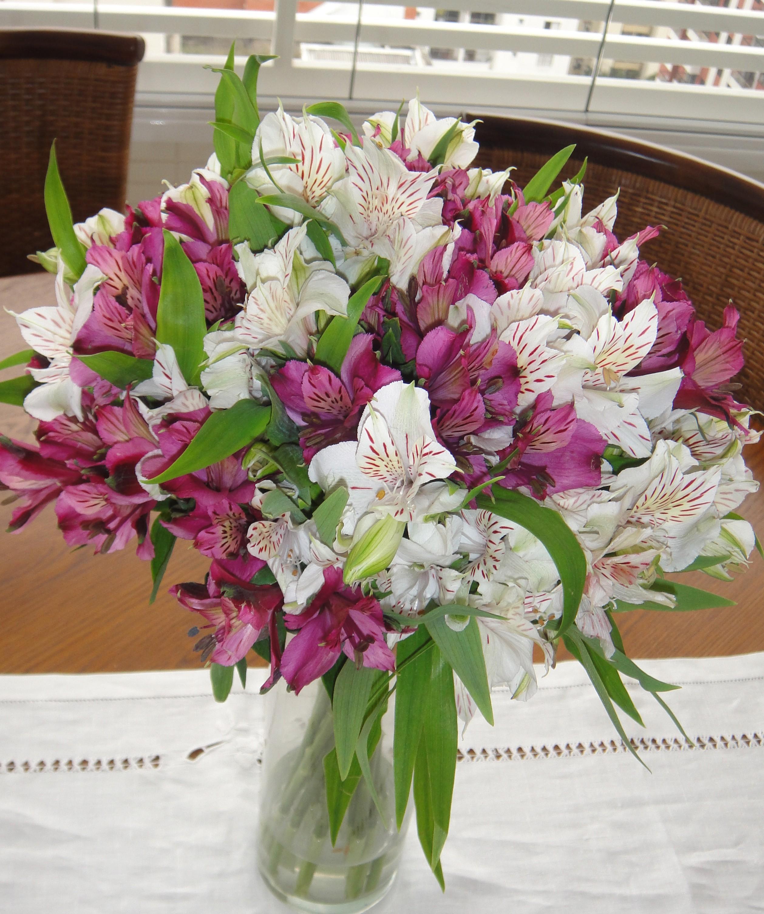 Flores infinitos estilos for Plantas baratas